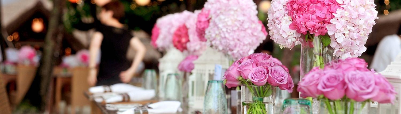 Hochzeits-Gala