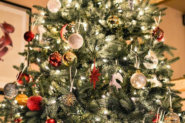 odeon-weihnachtsbuffet-warmteil